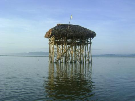 Fix Cottage of Barangay Sta Cruz,Albay