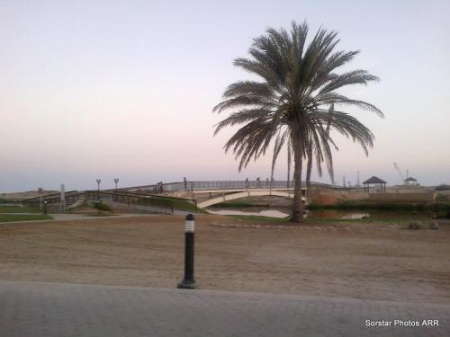 Al Baleed Excavation Site, Salalah