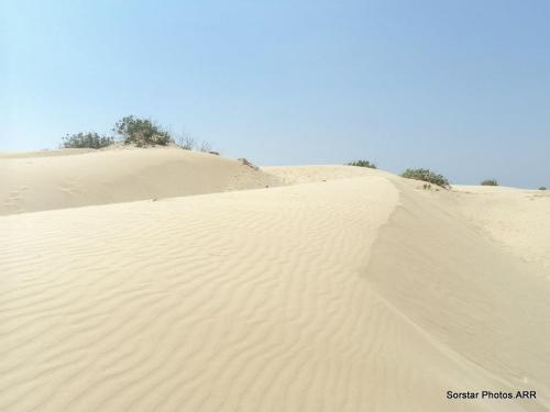 Sand Dunes of Salalah